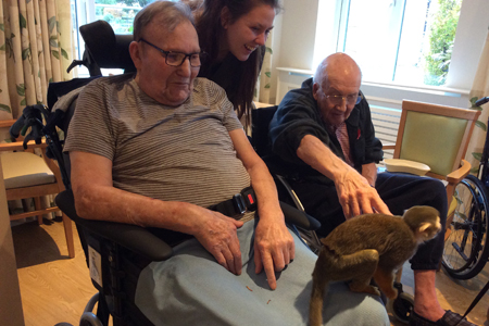 Care home residents monkey around